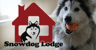 The Snowdog Lodge